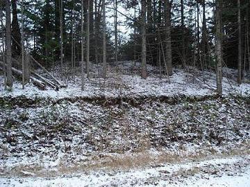 Snow on the Fox Farm